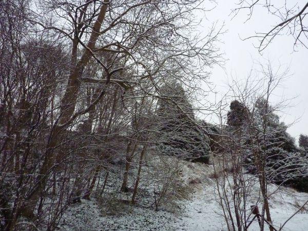 winter6666.jpg