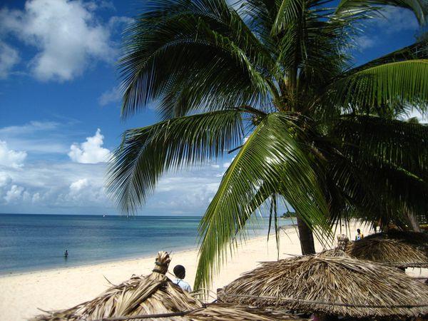 Praia do Wimbe - 21