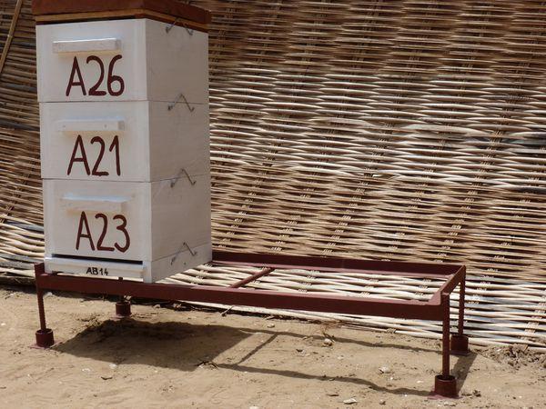 Support-2-ruches-WARRE.JPG