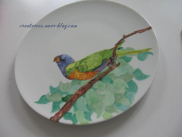 perroquet sur branche