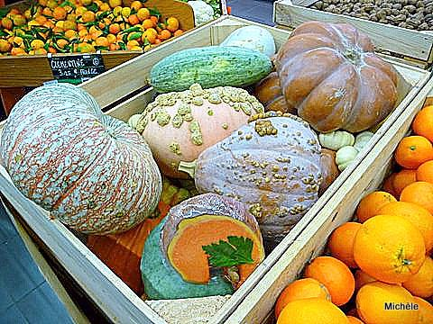 v07---Courges-a-vendre.JPG
