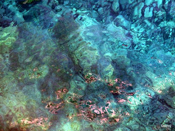 T03 - Au fond de l'eau