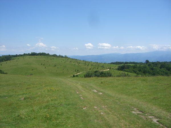 19-Landschaft
