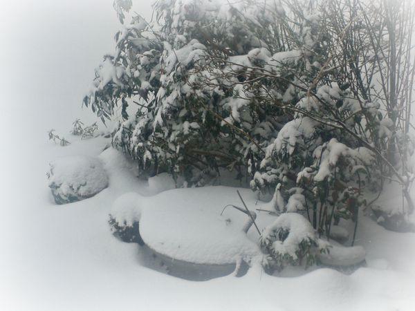 2013-03-12bis anniversaire auriane - neige mars 2013 016