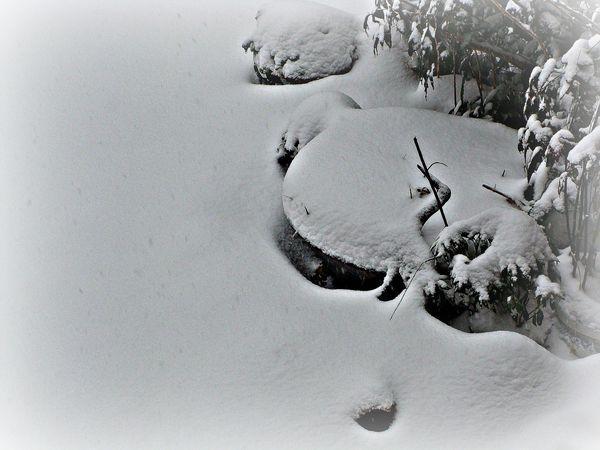 2013-03-12bis anniversaire auriane - neige mars 2013 019