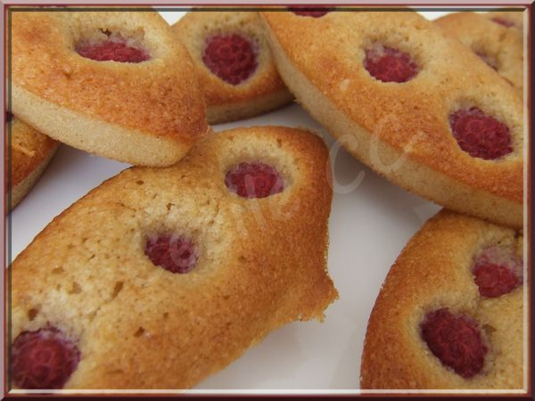 financiers-framboise-1.2.jpg