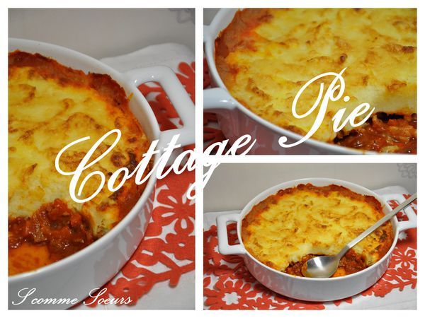 2010-02-25 cottagepie