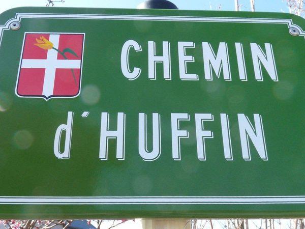 Tulipe de Neydens Chemin d'Huffin (2)