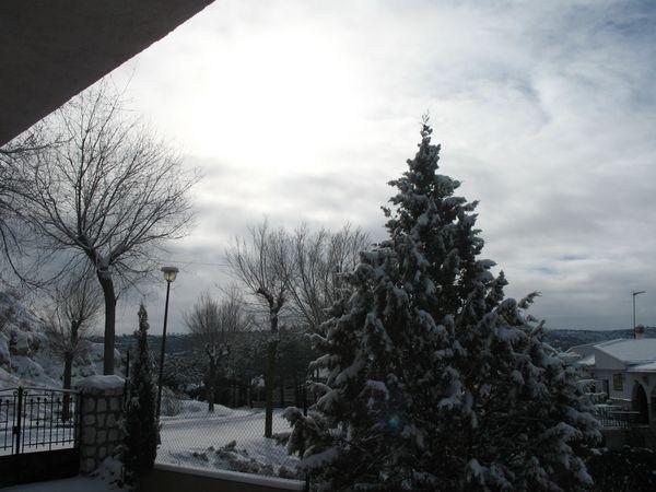enero-2009 3143