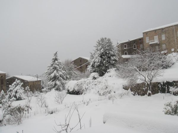 neige à Poggiolo 003
