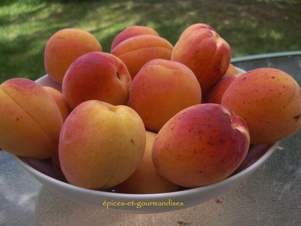 Tarte Abricots-Coco CIMG0218 (2)