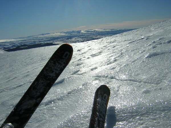Magic Monster skis Head