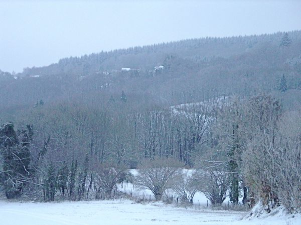 Neige-Limousin-dec-2009 6377