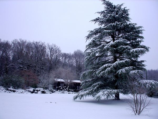Neige-Limousin-dec-2009 6390