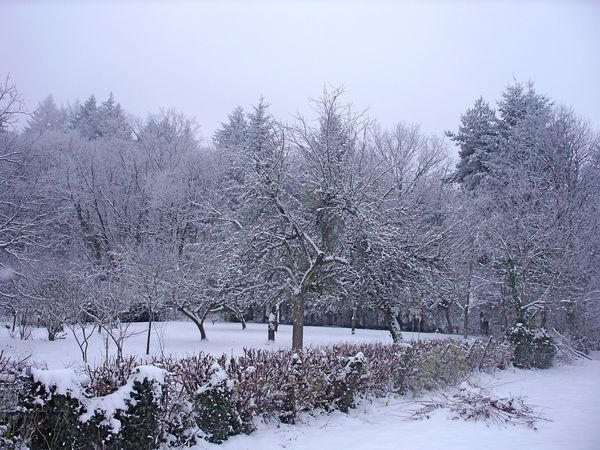 Neige-Limousin-dec-2009 6410
