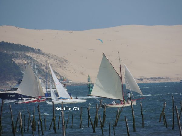 voile062012 10
