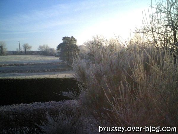 BRUSSEY GIVRE