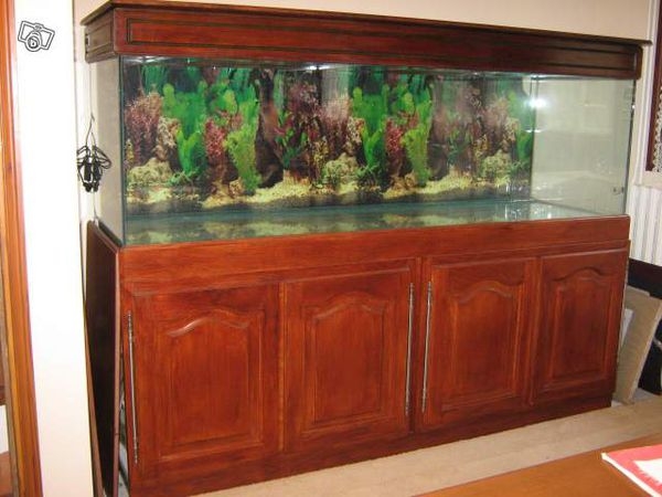 achat aquarium occasion. Black Bedroom Furniture Sets. Home Design Ideas