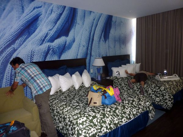 Ottawa chambre