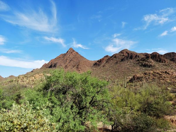 Tucson route vers Saguaro NP b