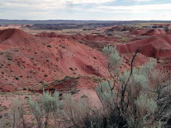Painted Desert Tiponi Point 1 (3)