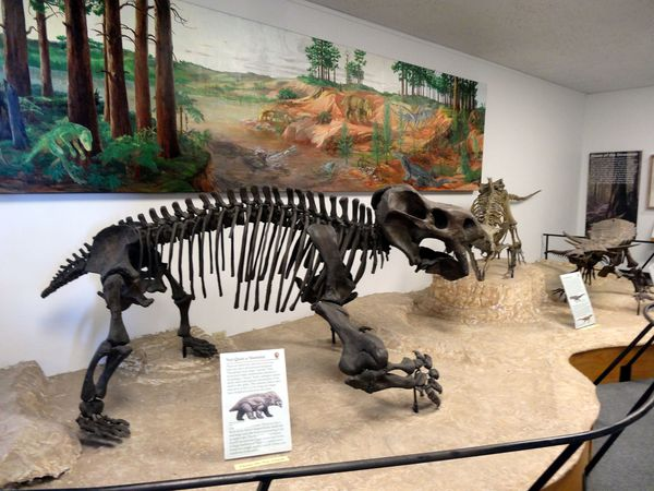 Petrified-Forest-Visitor-Center-dinosaures-1.jpg