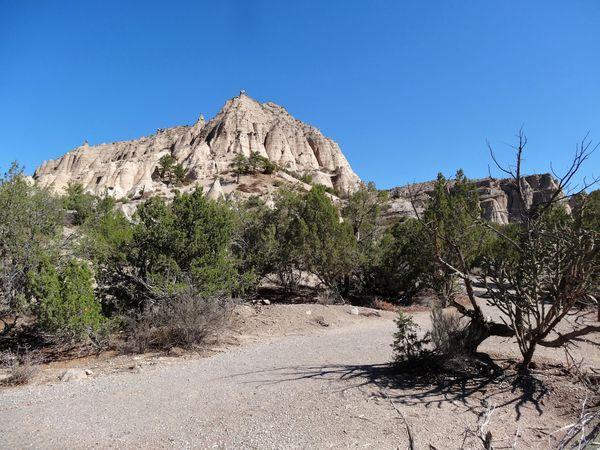 Tent-Rocks-arbre-mort.jpg