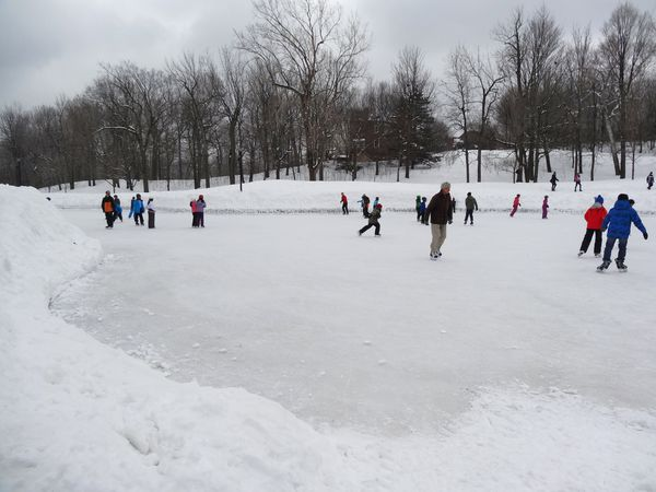 Mont-Royal Lac aux castors patinoire