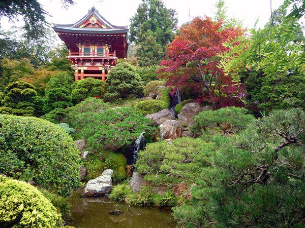 San Francisco Japonese Garden 5