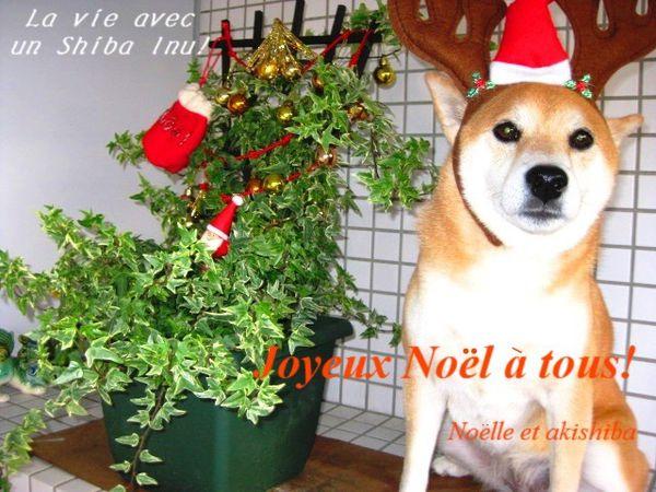 joyeux noel2011