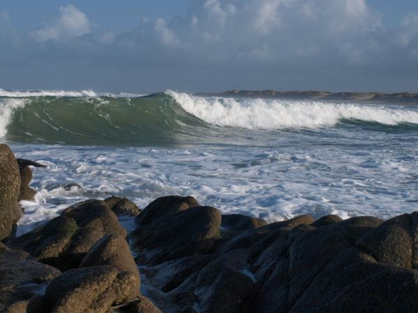 la vague-copie-1
