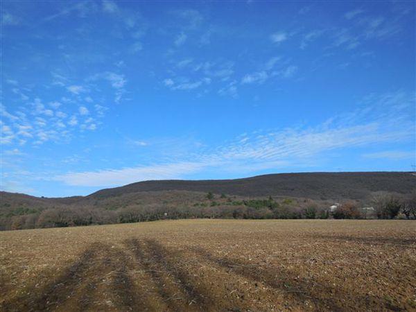 DSCN1023-collines