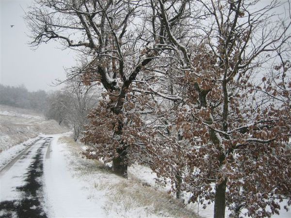 cap-gardettes-neige_6288.JPG