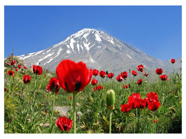 damavand_mountain_Wallpaper_rnryn.jpg