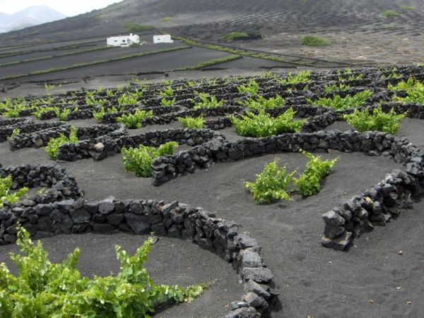 Lanzarote---Jerome-World-travel-photo.jpg