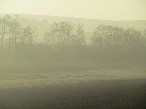 8.03.14-photos-brume 6598