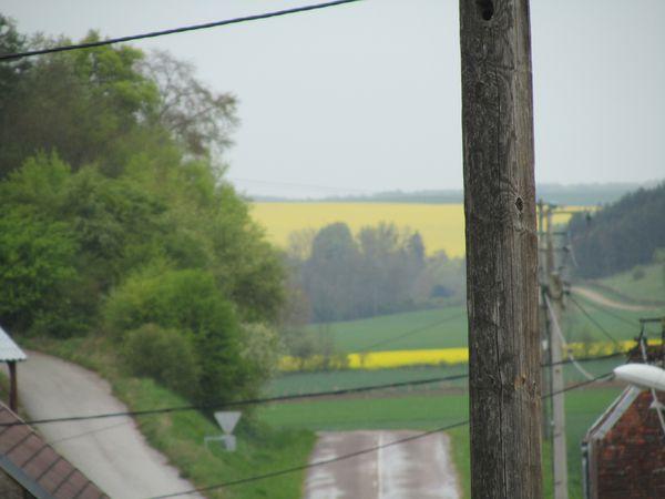 21.04.14 paysage 010