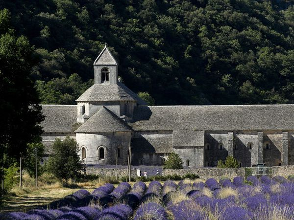 provence 6