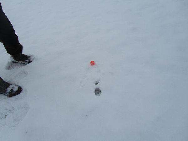 17.01.2013 golf sous la neige 016