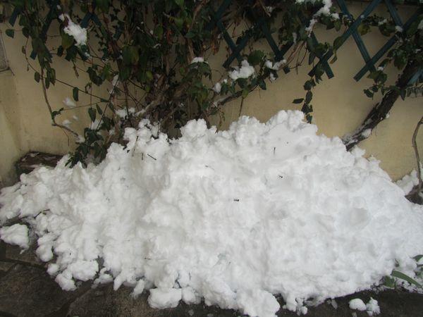 15.01.13 neige sur avirey 2 003