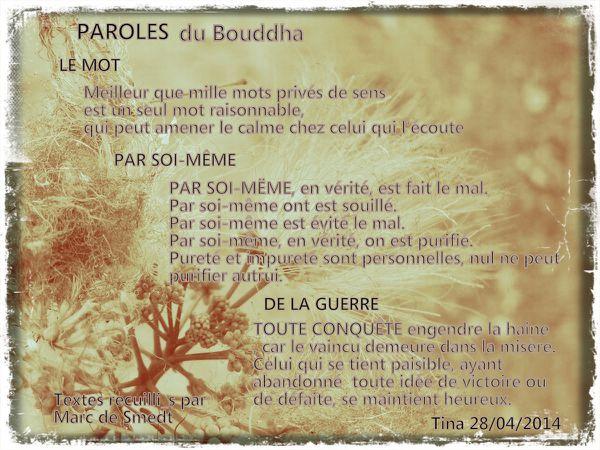 Paroles-ddu-Bouddha.jpg