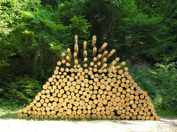 piled forest