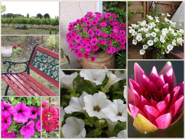 jardin2011