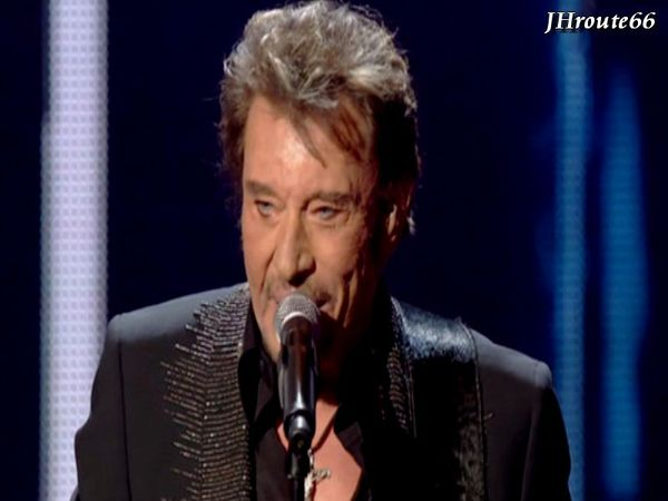 Creation-Johnny-Hallyday--Le-roi-du-rock-francais-n-2.jpg