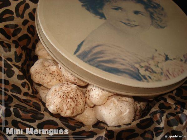 meringues (2)