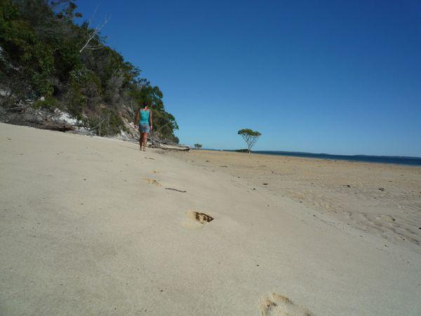 Fraser Island 03