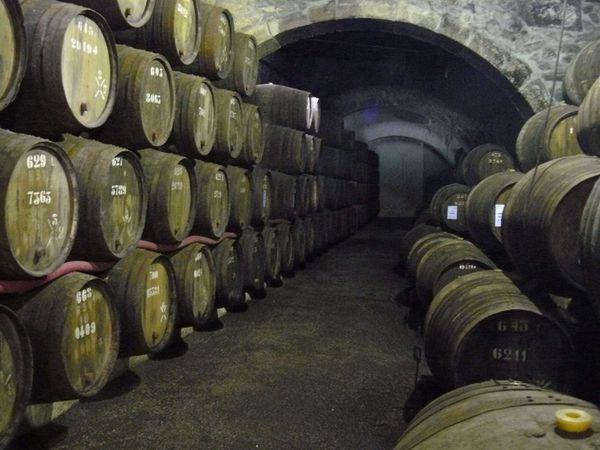54 - Caves de Porto