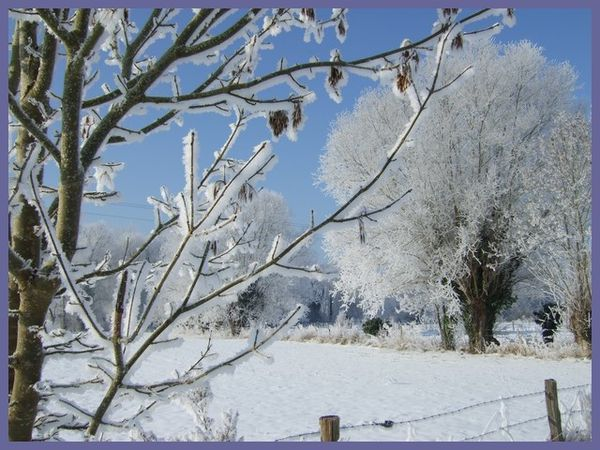 grand froid 2012 (23)