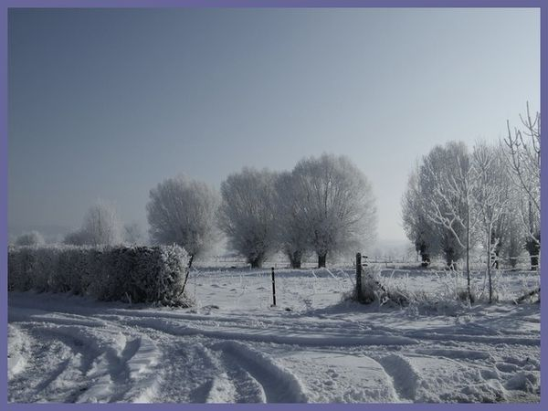 grand froid 2012 (5)