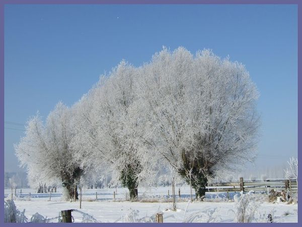 grand froid 2012 (8)